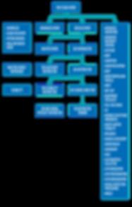 sdi-flowchart_v0220-Verticle_edited.png
