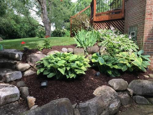 Landscaping Transformation