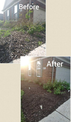 Mulch before and after