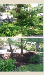Before and After Flower Bed