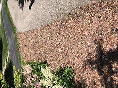 Sidewalk Path After