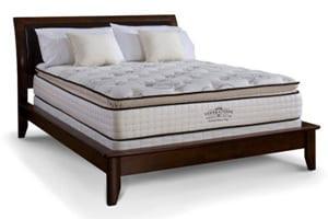 DM_DM_GEN_Relief_Pillow_B2-300x241-1.jpg