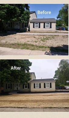 Lawn Transformation