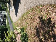 Sidewalk pat