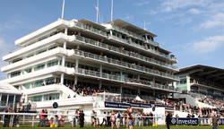 Queens Stand Epsom
