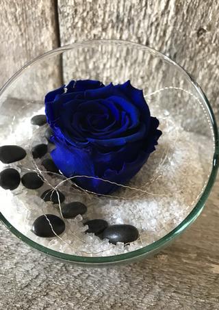 """Rose éternelle """"Bleu royal"""""""