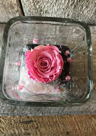 """Rose éternelle """"Rose"""""""