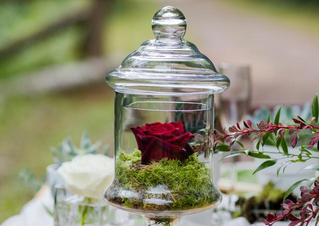 """Rose éternelle """"Rouge"""" avec mousse"""