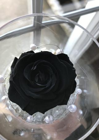 "Rose éternelle ""Noir"""