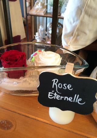 """Duo roses éternelles """"Rouge & blanche"""""""