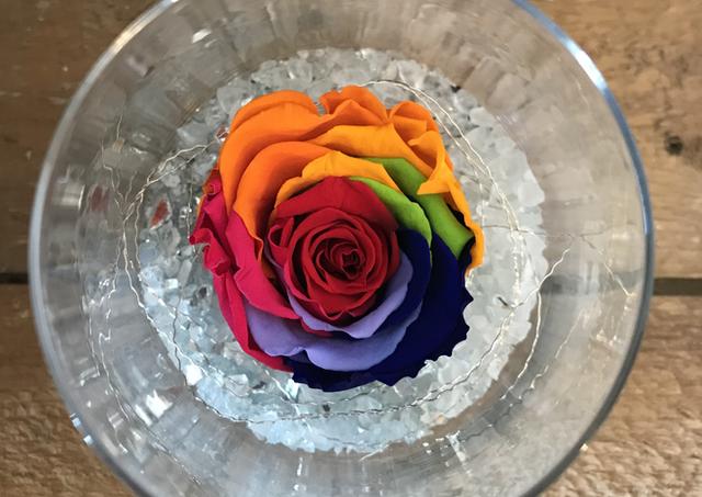 """Rose éternelle """"Multicolore"""""""