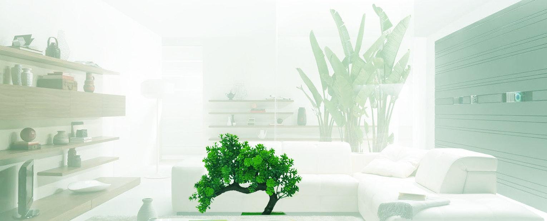 Bonsai casa portada 2.jpg