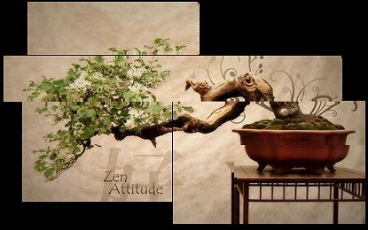 Foto Bonsai Zen lego.png