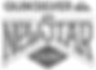 NSC_logo_2016-500x347.png