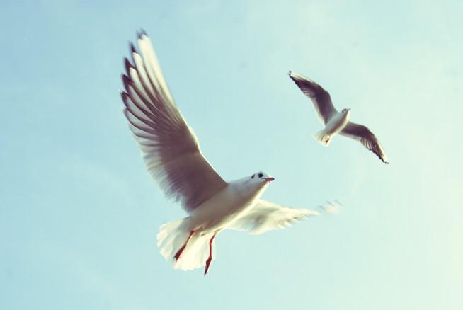 5 Dinge, die du sofort aussortieren kannst | 5 Things To Toss Right Now