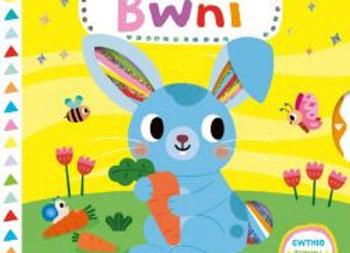 Cyfres Storïau Hud: Storïau Hud Bwni - Campbell Books