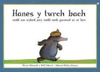 Hanes y Twrch Bach oedd am Wybod Pwy oedd Wedi Gwneud ar ei Ben Werner Holzwarth