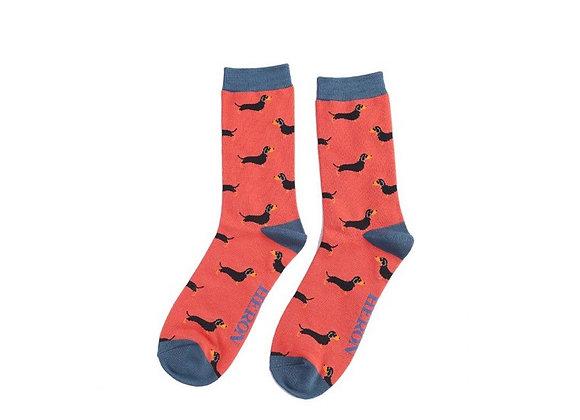 Sanau Cŵn Sosej Oren Mr Heron Orange Sausage Dogs Socks