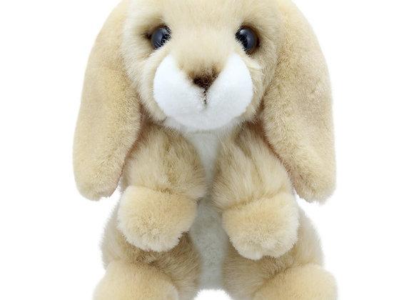 Cwiningen / Rabbit - Lop-Eared - Wilberry Mini's
