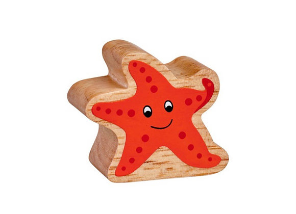 Seren Fôr /Starfish