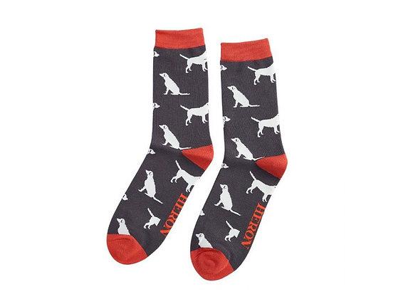 Sanau Labradors Llwyd Tywyll Mr Heron Charcoal Labradors Socks