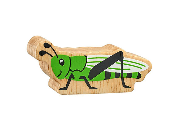 Ceiliog Y Rhedyn / Grasshoper