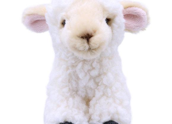 Oen / Lamb - Wilberry Mini's
