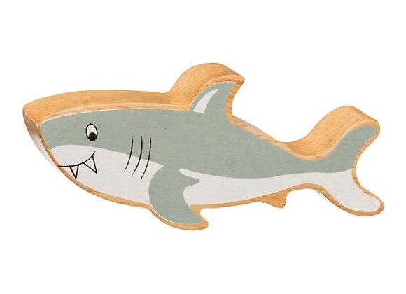 Siarc Llwyd / Grey Shark