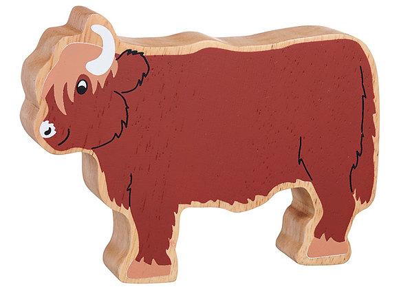 Buwch Highland Cow