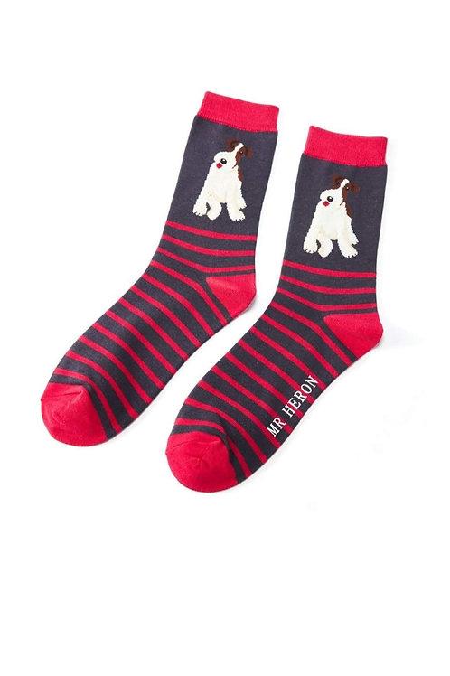Sanau Fox Terrier Mr Herron Socks