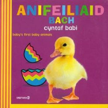 Anifeiliaid Bach Cyntaf Babi / Baby's First Baby Animals - Dawn Sirett