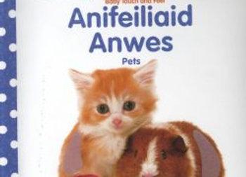 Babi Cyffwrdd a Theimlo: Anifeiliaid Anwes / Pets
