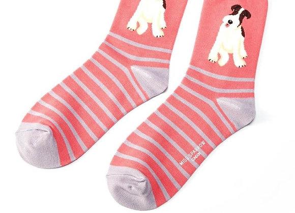 Sanau Fox Terrier Stripes Miss Sparrow Socks