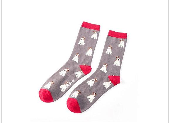 Sanau Llwyd Fox Terrier Mr Heron Grey Socks