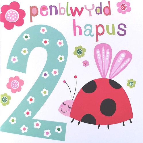 Penblwydd Hapus 2 Oed