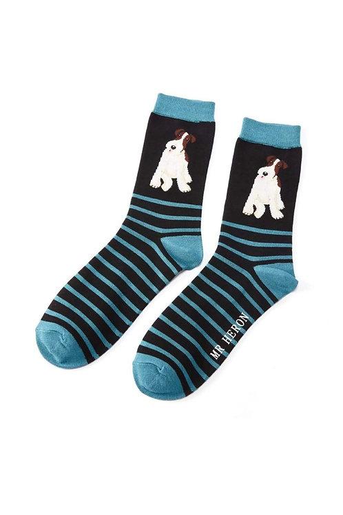 Sanau Fox Terrier Stripes Mr Herron Socks