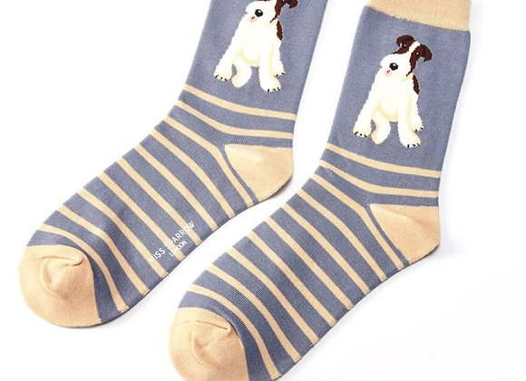 Sanau Fox Terrier Stripes Miss Sparrow Socks