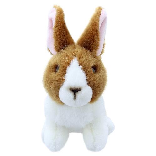 Cwiningen / Rabbit - Brown & White - Wilberry Mini's