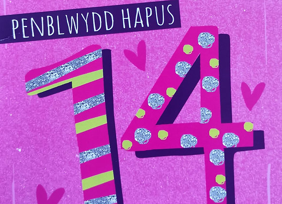 Penblwydd Hapus 14 Oed