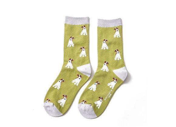 Sanau Gwyrdd Fox Terrier Miss Sparrow Green Fox Terrier Socks