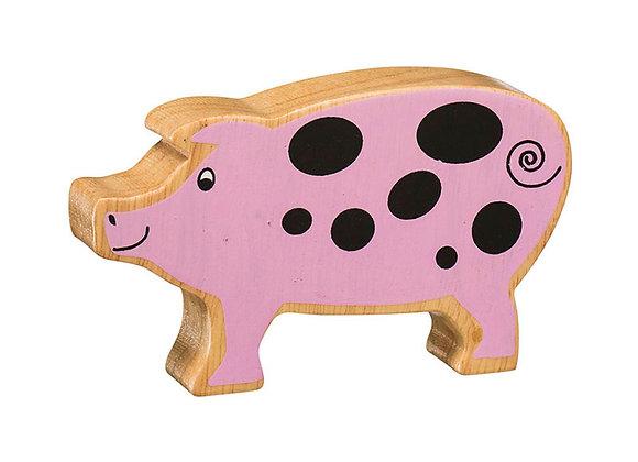 Mochyn / Pig