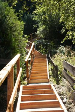 Escalier en mélèze