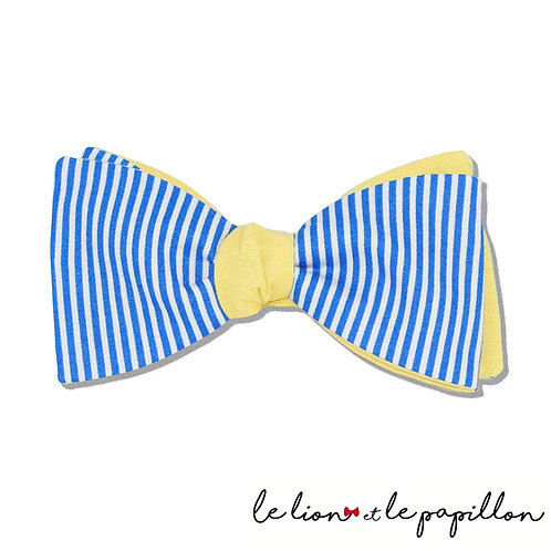 Noeud papillon bicolore rayé bleu et blanc