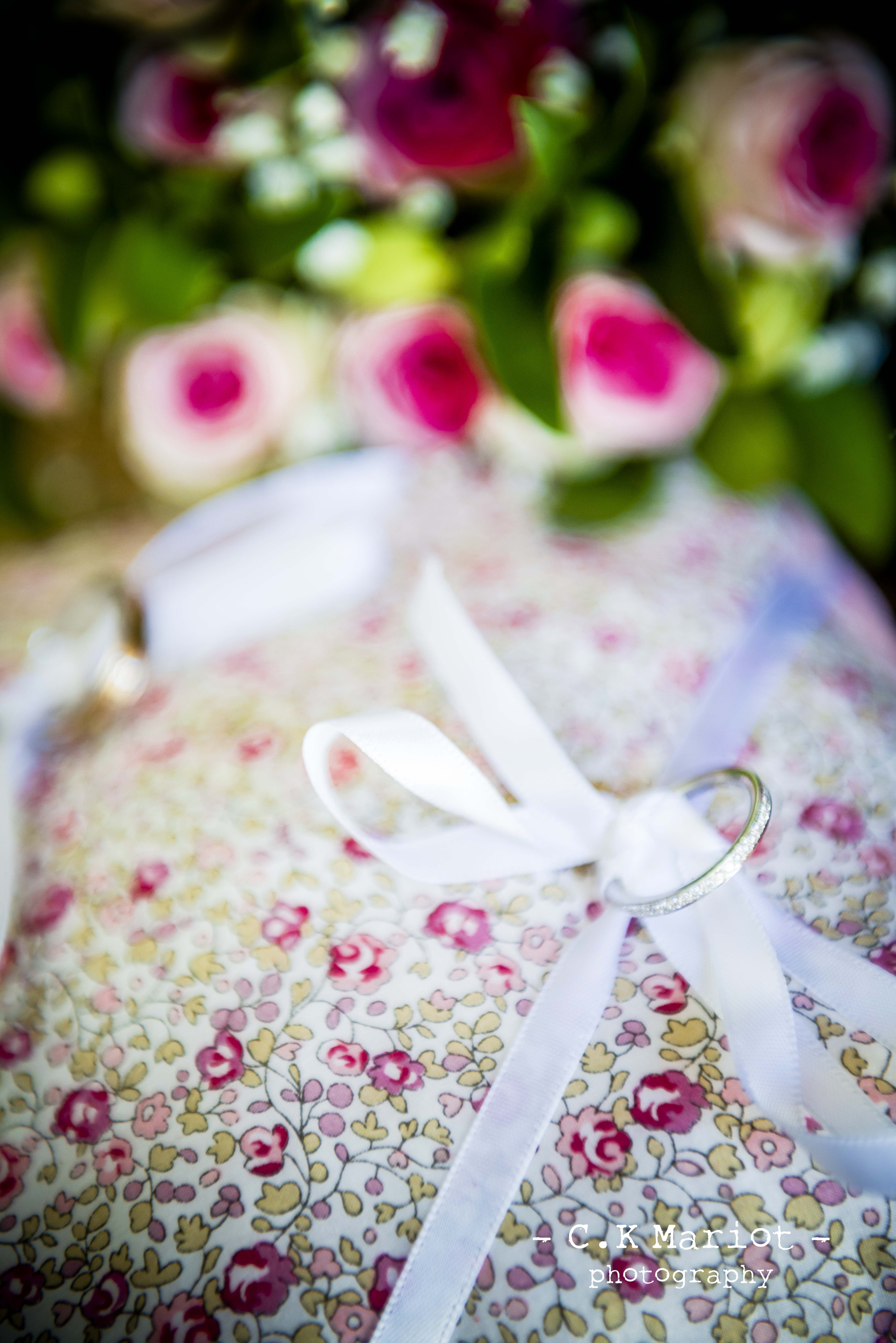 Nœuds papillon, accessoires de maria
