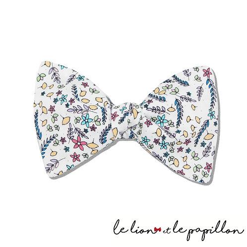 Noeud papillon multicolore fond blanc
