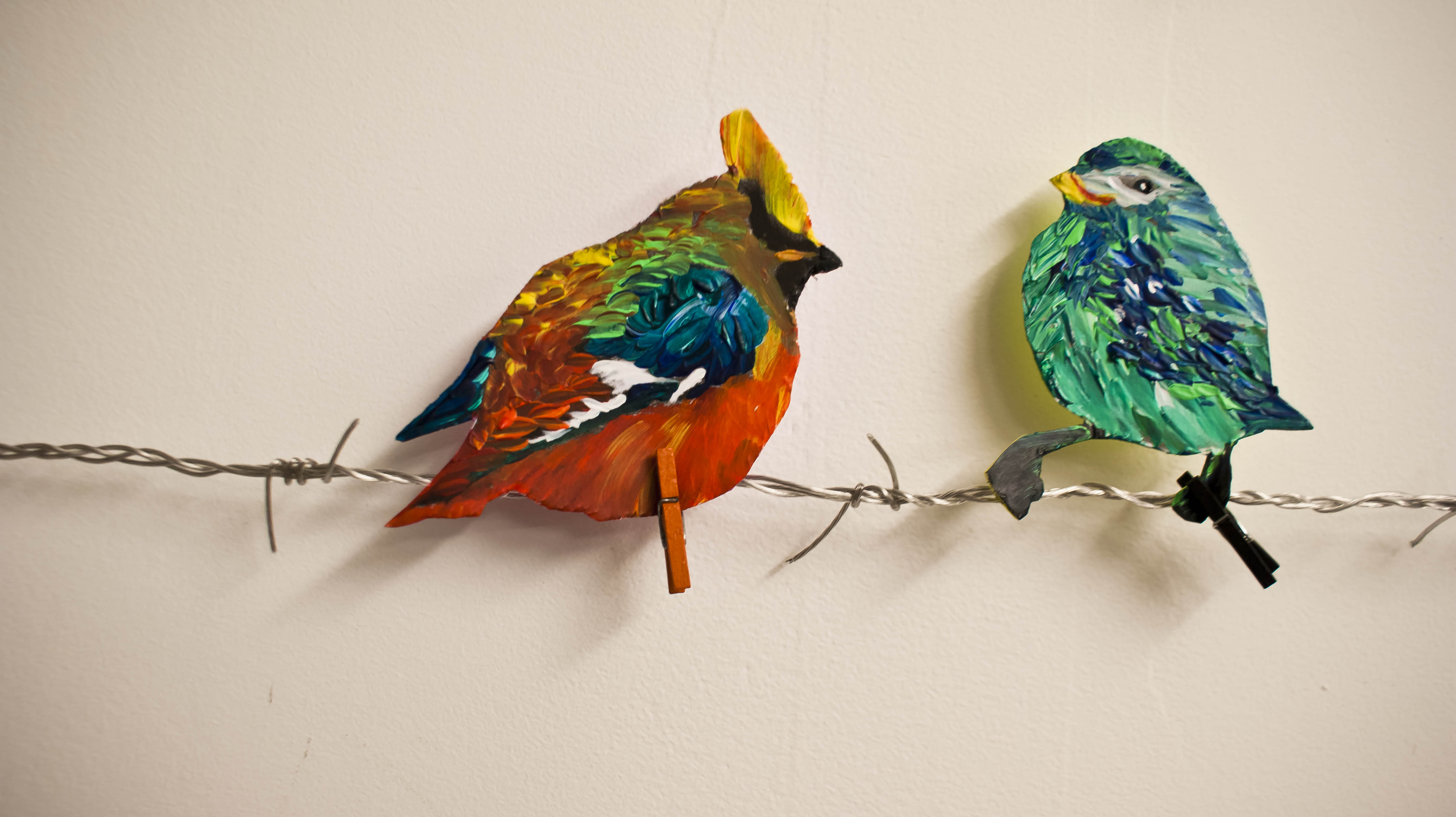 Birds with Personality