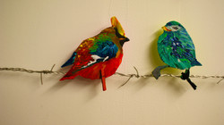 Painted Bird Project