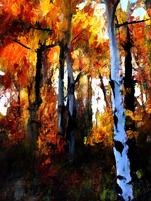 In the Midst of the Forest by Janice Mather