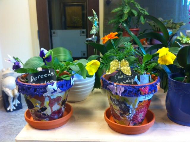 Finished Pots - Spring