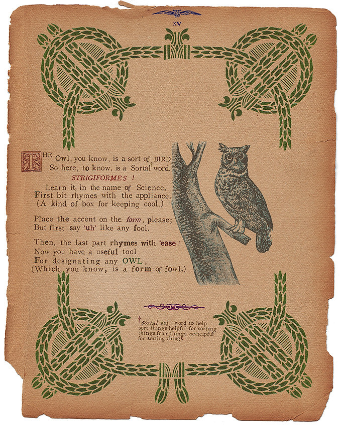 The Owl, you know, is a sort of BIRD
